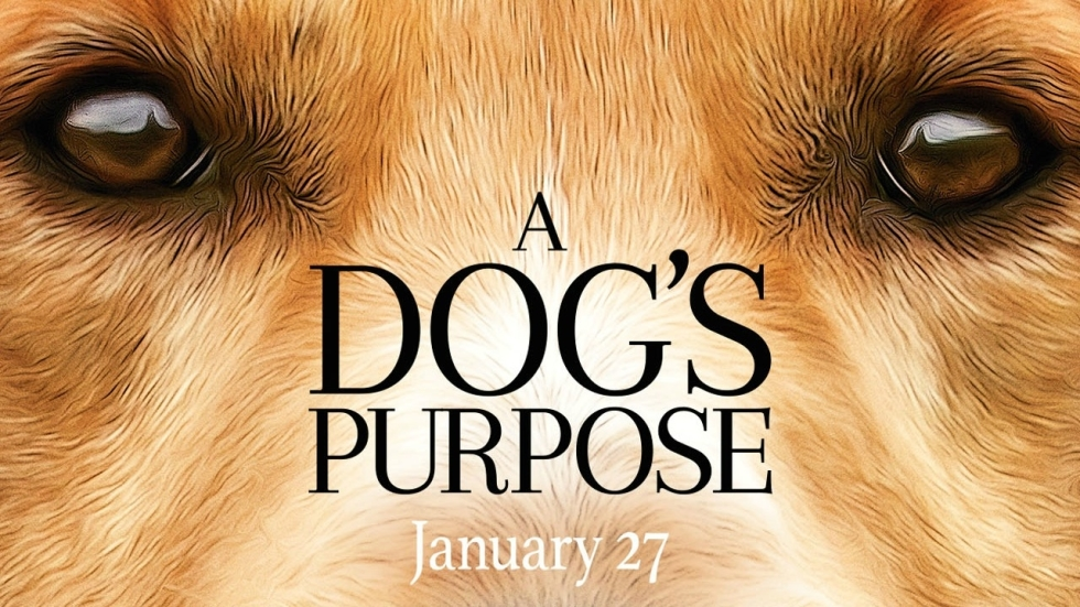 Trailer 'A Dog's Purpose' is voor hondenliefhebbers