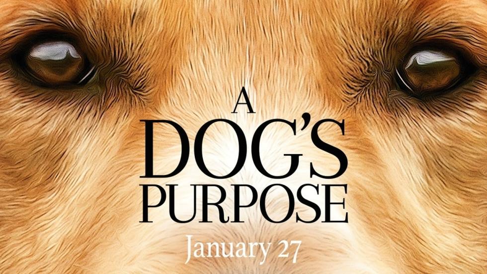 Trailer 'A Dog's Purpose' is voor hondenliefhebbers