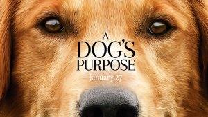 A Dog's Purpose (2017) video/trailer