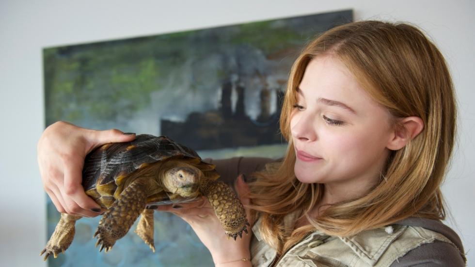 Nieuwe tegenslag voor 'The Little Mermaid': Chloë Grace Moretz stopt