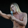'Gimme Danger' trailer: keihard rocken met Iggy Pop & The Stooges