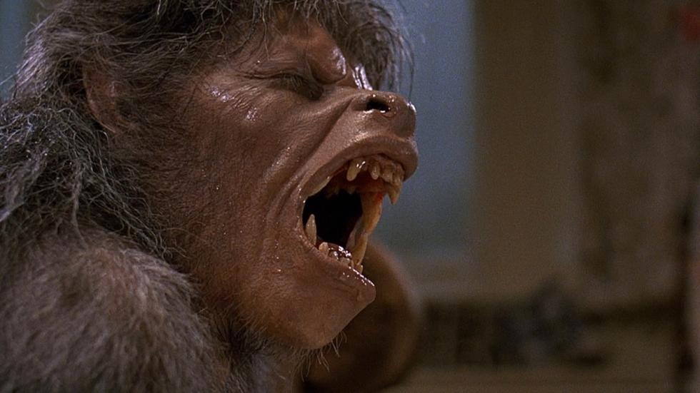 Max Landis maakt remake 'An American Werewolf in London'