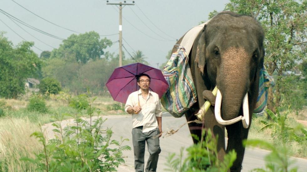 Een olifant als huisdier in 'Pop Aye' trailer