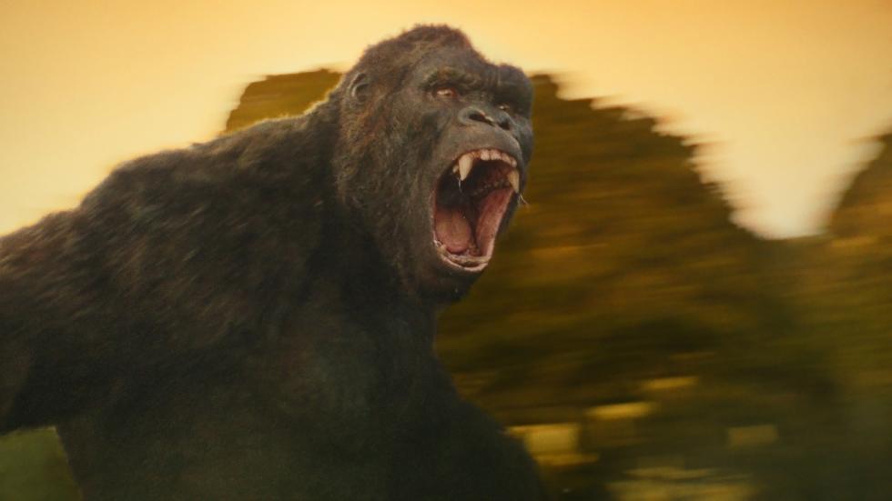 Alles over 'Kong: Skull Island'