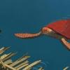 Michael Dudok de Wits 'The Red Turtle' wint weer een prijs