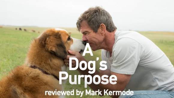 Kremode and Mayo - A dog's purpose reviewed by mark kermode