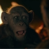 Blu-ray review 'War for the Planet of the Apes' - Indrukwekkend einde aan de trilogie