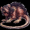 meanrat Avatar