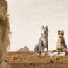 Eerste trailer voor Wes Andersons 'Isle of Dogs'