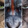 Nieuwe 'Planet of the Apes'-film toch geen reboot maar een vervolg!