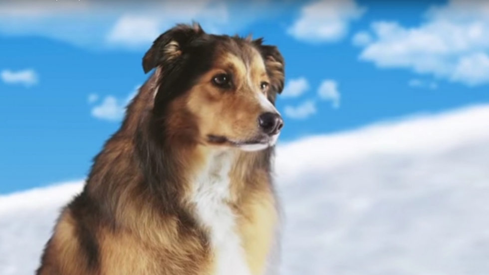 'Best Friend From Heaven' krijgt wel heel vreemde trailer...