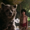 Duistere Baloo in Serkis-versie 'The Jungle Book'