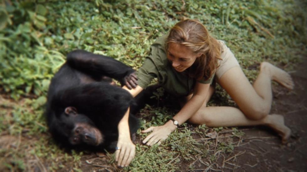Alles over de prachtige documentaire 'Jane'