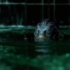 Blu-ray review 'The Shape of Water' - Del Toro's kunststukje!