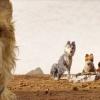 Blu-ray review 'Isle of Dogs' - Weer een werkelijk prachtige Wes Anderson!