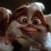 Chris Columbus maakt nieuwe 'Gremlins'