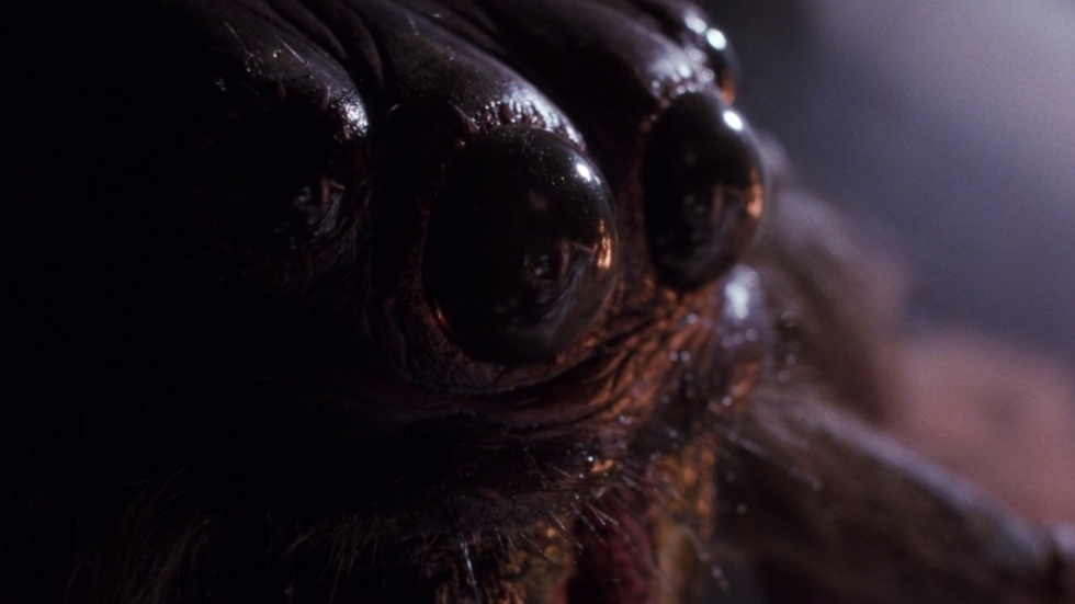 James Wan produceert remake 'Arachnophobia'