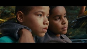 We the Animals (2018) video/trailer