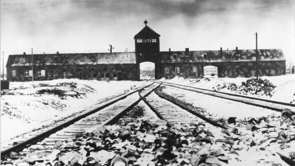 'Under the Skin'-regisseur maakt film over Auschwitz