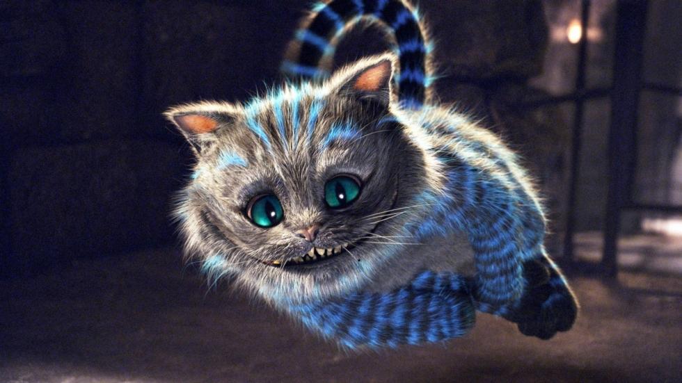 POLL: De vermakelijkste katten in films!