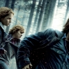 Alle Harry Potter-films gerangschikt!