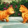 Eindelijk schot in de zaak: 'Garfield' vindt regisseur