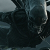 Untitled Alien: Covenant Sequel