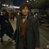 Blu-ray review verlengde versie 'Fantastic Beasts: The Crimes of Grindelwald'