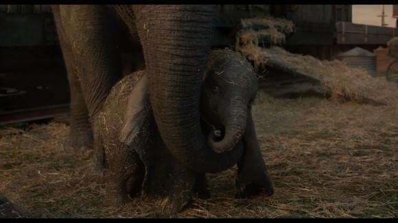 Dumbo - new trailer
