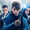 'Fantastic Beasts 2' zorgt voor plotgat in 'Harry Potter'-films