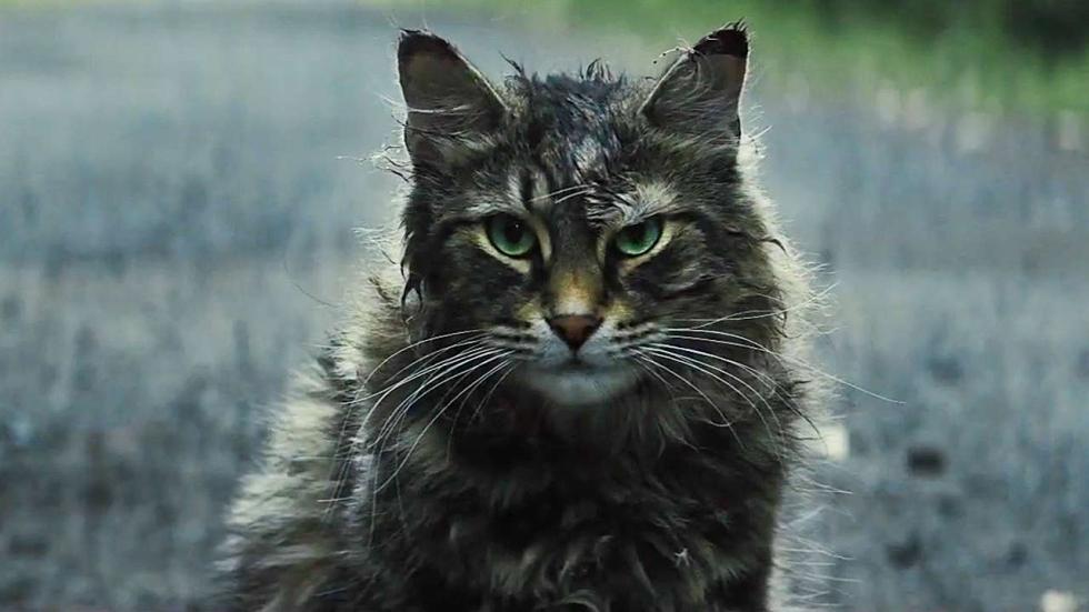 Bioscooptip: Pet Sematary - de beste Stephen King-film!