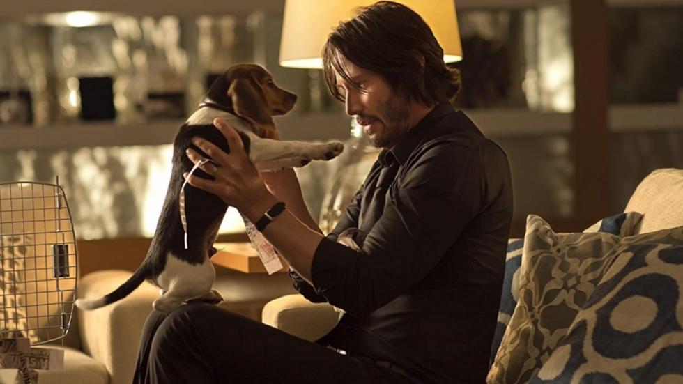 Keanu Reeves onthult merkwaardige hobby van John Wick