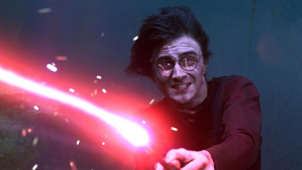 Dit zijn de Blast-Ended Skrewts die niet in de 'Harry Potter'-films zitten
