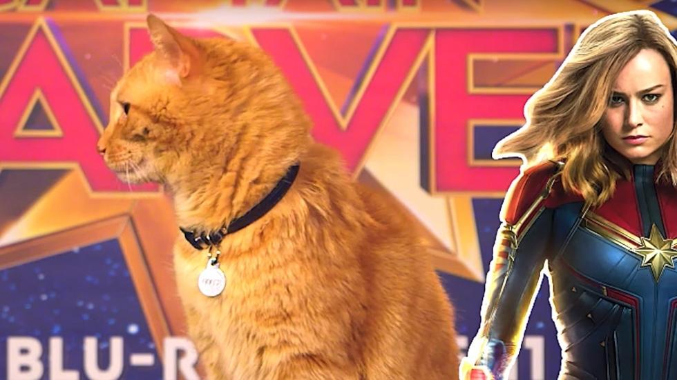 Rode poes van Captain Marvel beantwoordt 'belangrijke' vragen