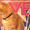 Kree Sentries onthuld via gave beelden 'Captain Marvel'