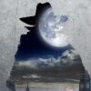 Eerste trailer 'The Invisible Man' start Dark Universe 3.0!