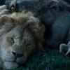 'Lion King'-acteur wil meer openlijke homoseksuelen in animatie- en familiefilms