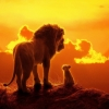 FilmTotaal recensie 'The Lion King'!