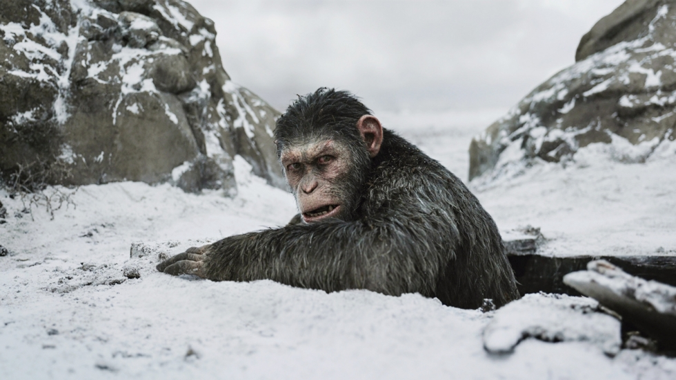 Disney wil meer 'Planet of the Apes'-films