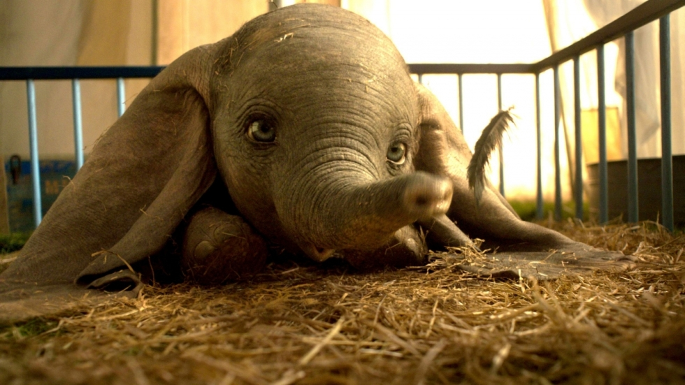 Blu-ray review 'Dumbo' - Waarom geen topper als 'The Lion King' en 'Aladdin'?