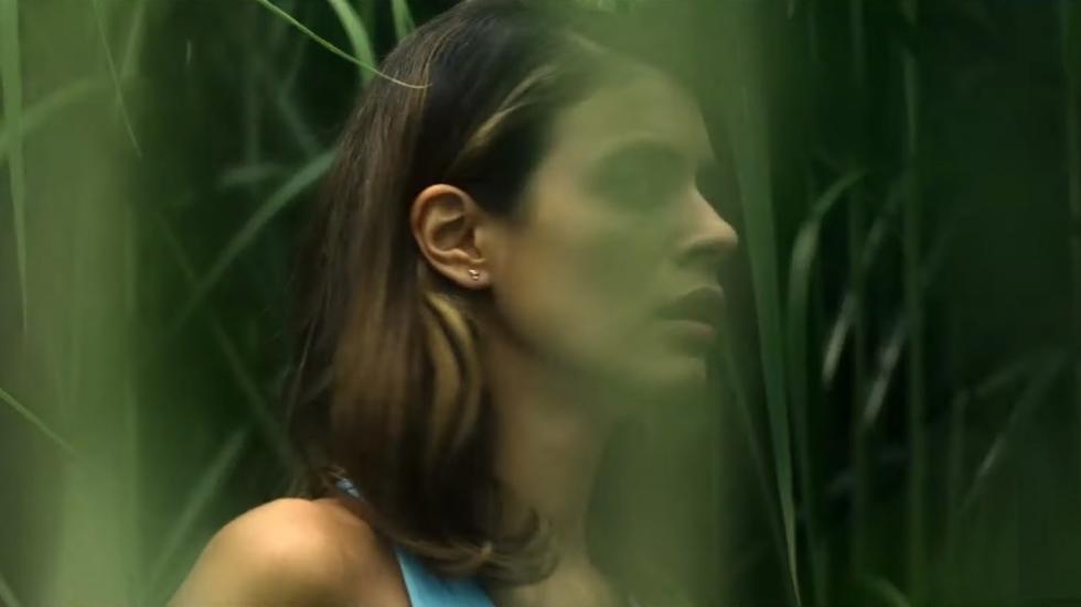 Trailer Stephen King-film 'In the Tall Grass' van Netflix!