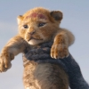 Hilarisch 'The Lion King' Halloween kostuum voor Dwayne Johnson