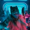 Film 'Cats' blijkt echt een historische flop in de bioscoopzalen