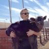 'Joker'-acteur Joaquin Phoenix bevrijdt koeien uit slachthuis (video)
