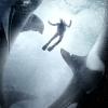 'Avatar'-ster Sam Worthington in opvallende haaienthriller 'Alphas'