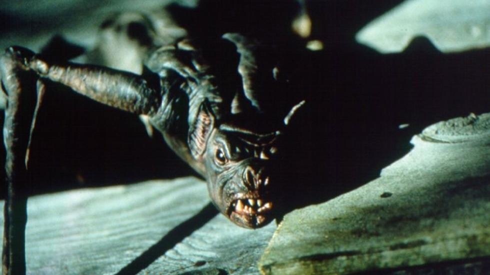 Deze 5 film-vleermuizen zijn in ieder geval niet de oorzaak van Covid-19.