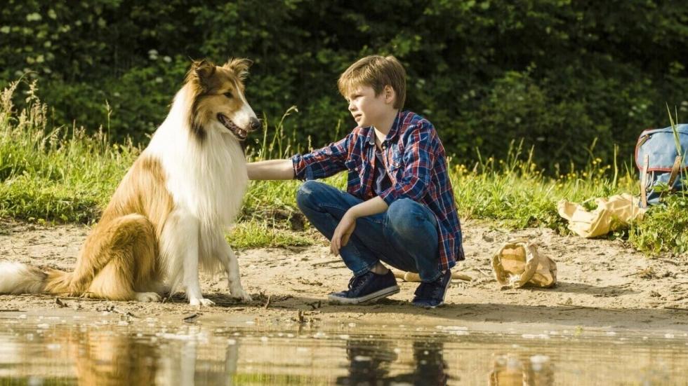 Hondenliefhebbers: 'Lassie' is terug!