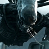Meer 'Alien'-films zijn gewoon mogelijk denkt deze actrice