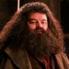Hagrid-acteur komt op voor J.K. Rowling