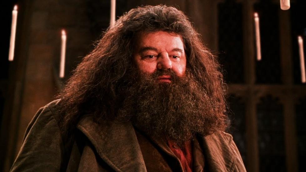 'Hagrid' neemt het op voor verguisde J.K. Rowling